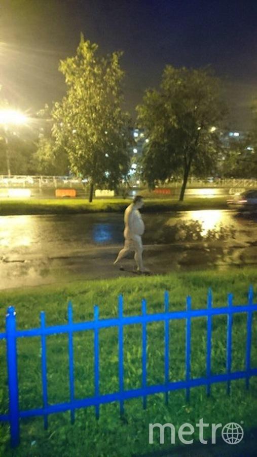 """Паблик """"ДТП и ЧП/Петербург"""": vk.com/spb_today."""