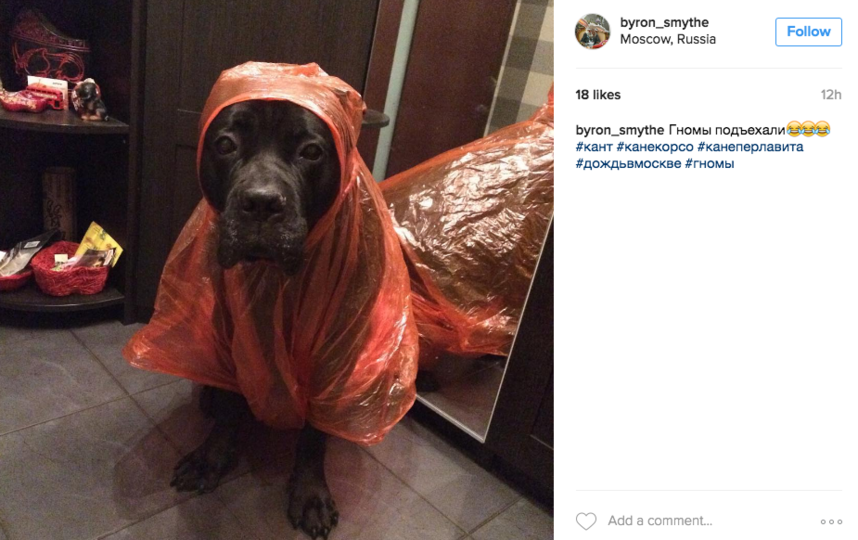 скриншот/Instagram/ byron_smythe.