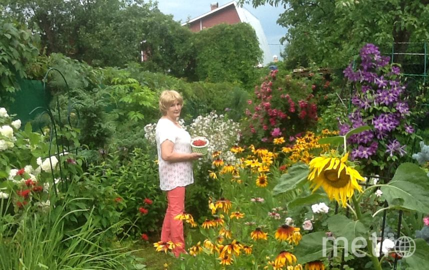 Сафронова Нина Константиновна.
