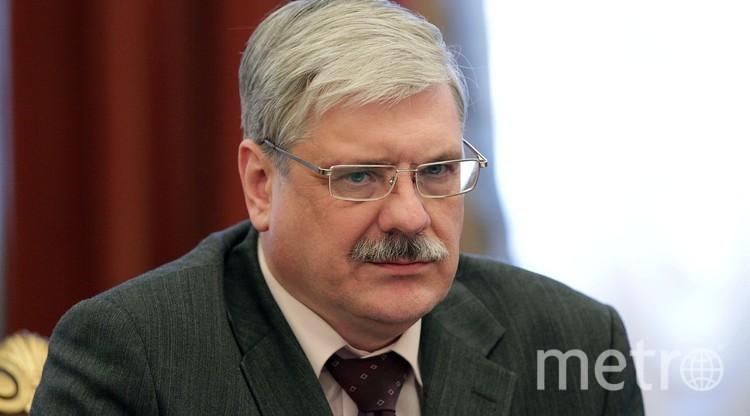 www.assembly.spb.ru.
