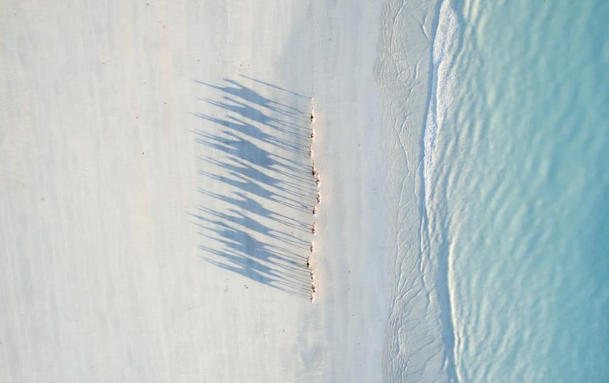 DRONESTAGRAM/Todd Kennedy.