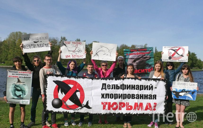 Центр защиты прав животных «ВИТА».