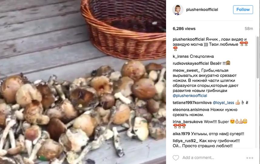 https://www.instagram.com/plushenkoofficial/.
