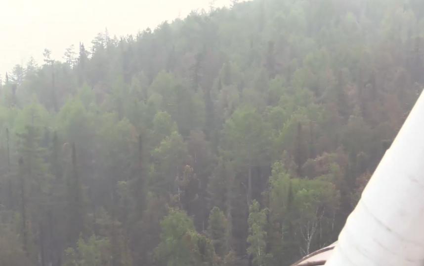 скриншот видео ГУ МЧС РФ.