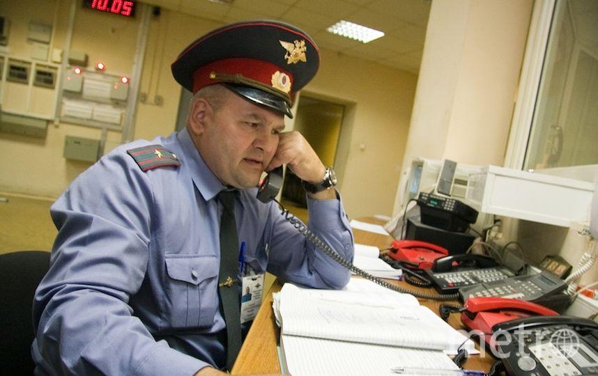 Андрей Свитайло.