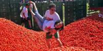 В Колумбии провели томатную битву