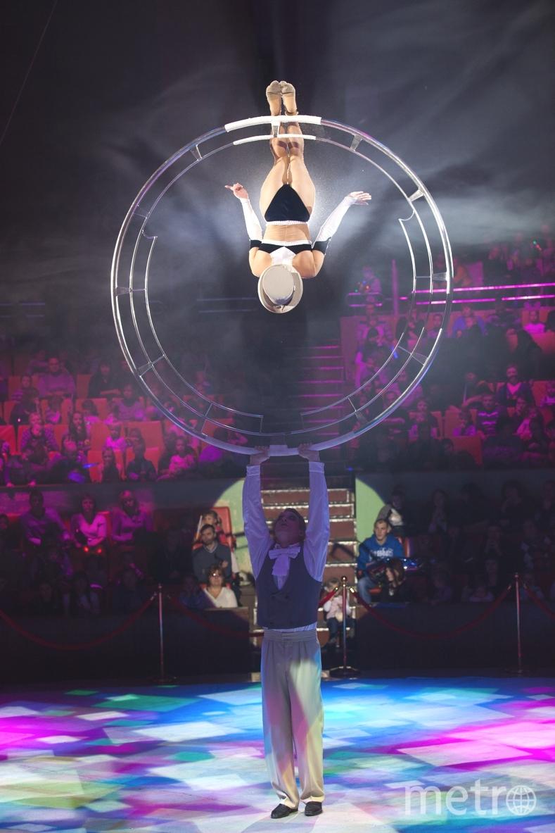предоставлено цирком на фонтанке.