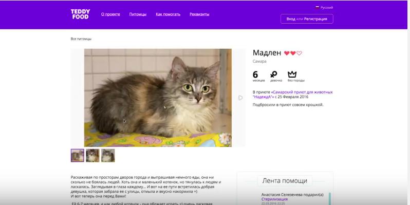 Скриншот boomstarter.ru.