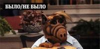 Нет, в Парке Горького не будут делать шашлык из котов