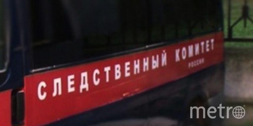 http://hakasia.sledcom.ru/news/item/1034207/.