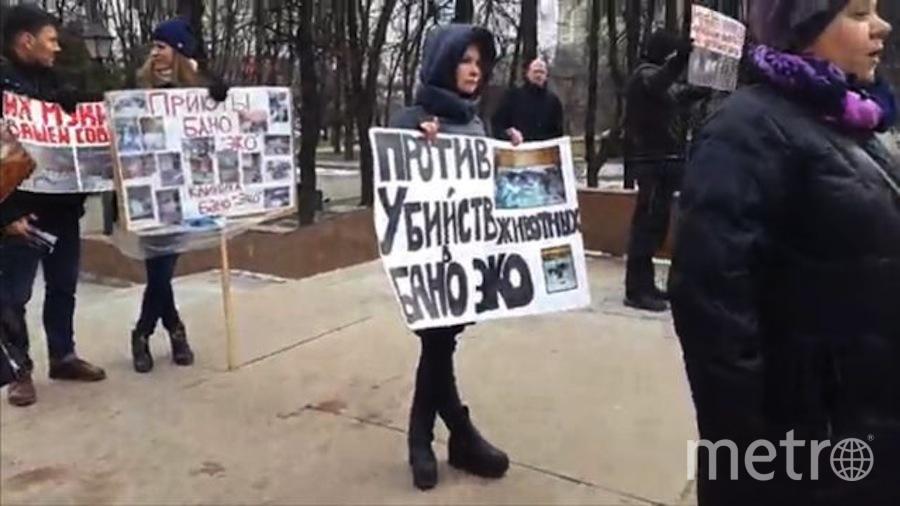 Скриншот из видео.