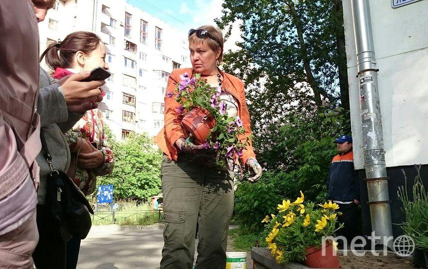 """предоставлены организаторами акции """"Достоевский не мусорил""""."""