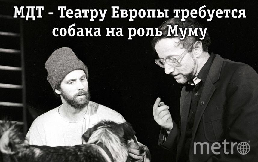 http://www.mdt-dodin.ru.