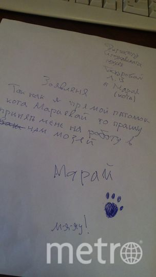 Нина Стрелкова.