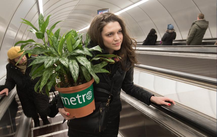 Metro / Святослав Акимов .