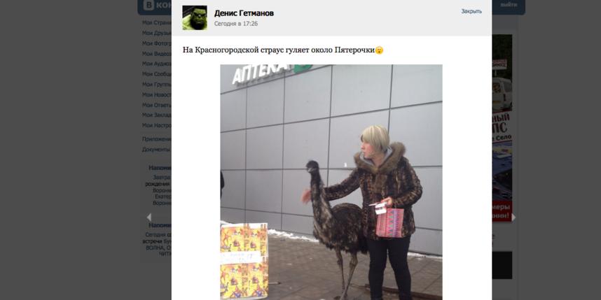 https://vk.com/krasnoe_selo.