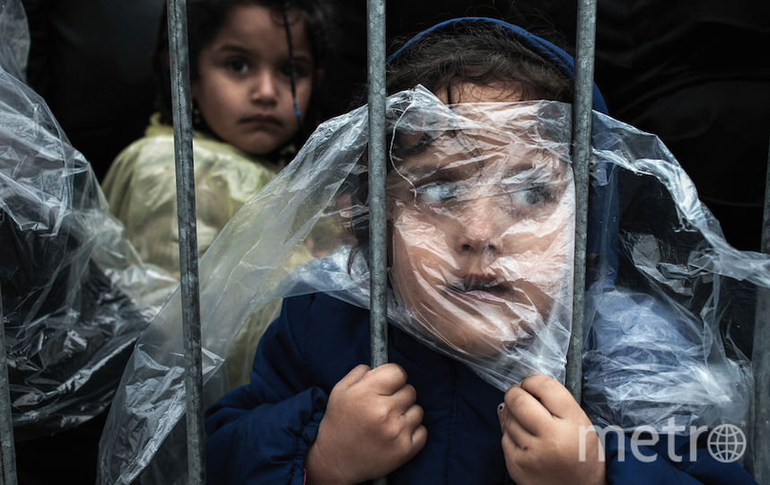 Matic Zorman, предоставлено World Press Photo.