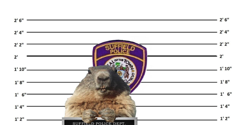 https://www.facebook.com/Suffield-CT-Police-Department-112215325484601/.