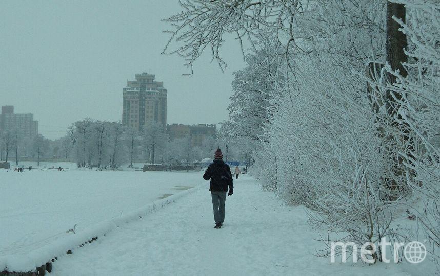 Metro  / Анна Лутченкова.
