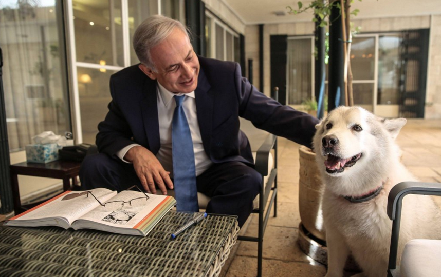 twitter.com/netanyahu.