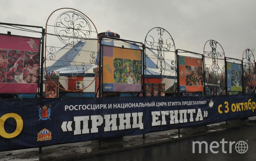Святослав Акимов / Архив Metro.
