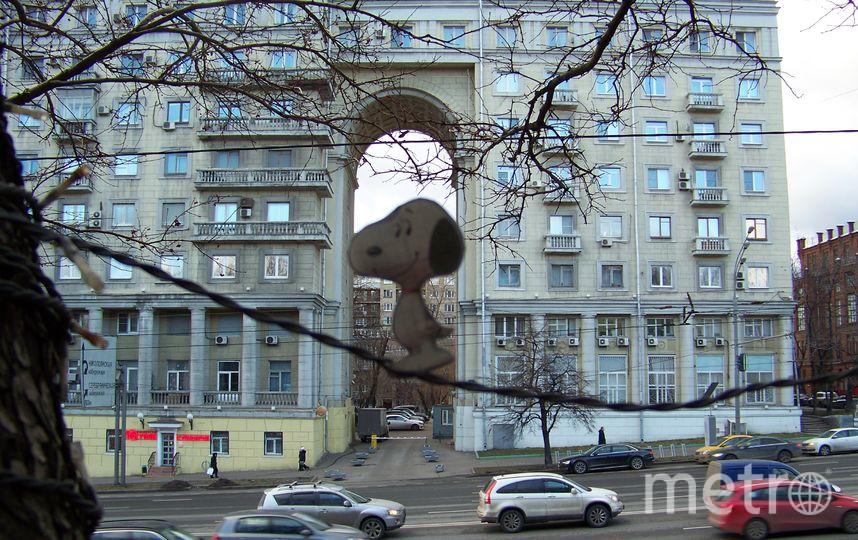 Тельнов Виталий.