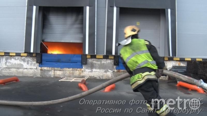 http://78.mchs.gov.ru/.