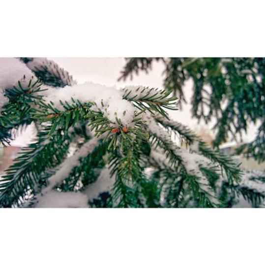 https://instagram.com/p/9IcCBNCMnR/?taken-by=sergei_minaev2.0.