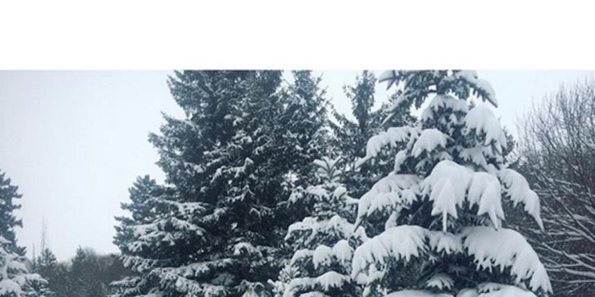https://instagram.com/p/9IfNivJOTl/?taken-by=evamalvina.