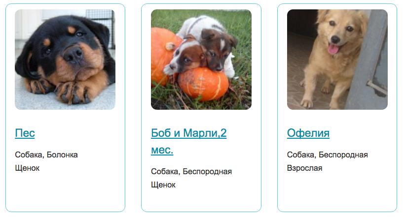pora-domoy.ru.
