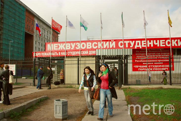msg-spb.ru.