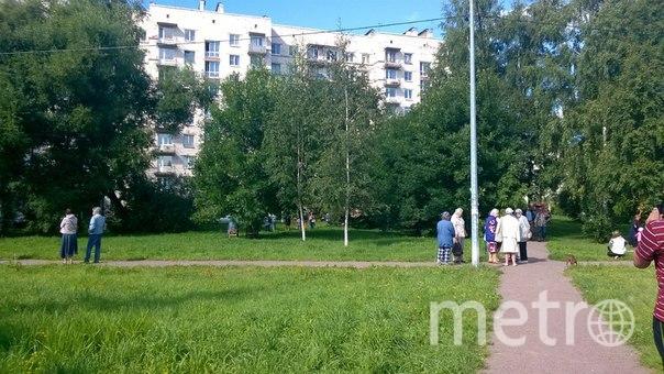 ДТП и ЧП | Санкт-Петербург https://vk.com/spb_today.