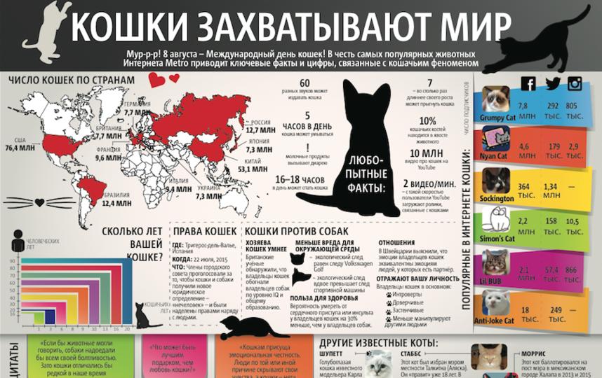 Текст: Дмитрий Беляв, Инфографика: Нэнси Маседо.