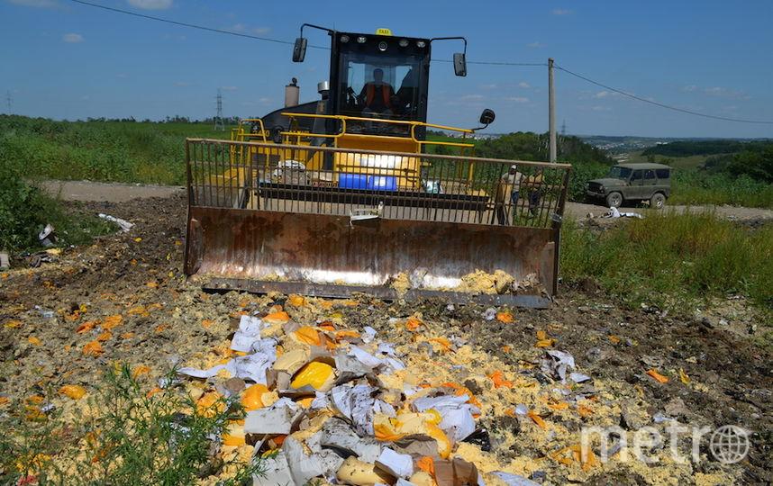 Все фото предоставлены пресс-службой Россельхознадзора Белгородской области.