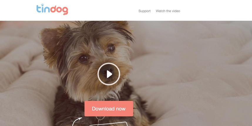 Скриншот www.tindog.co.
