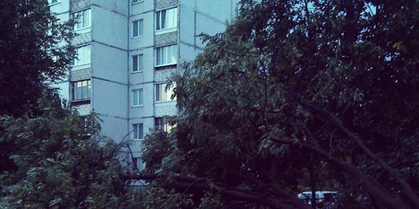 https://instagram.com/p/5oykA5gstn/?taken-by=kotletaksuuu.