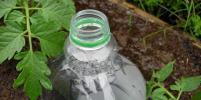 Поделки из пластиковых бутылок: как использовать старую тару из-под напитков