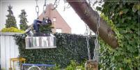 Пять идей, как украсить сад без особых затрат
