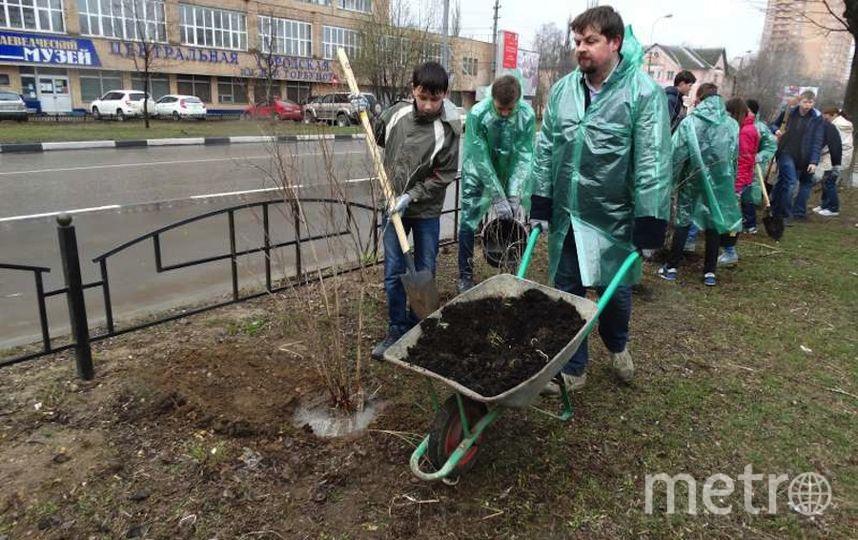 ivanteevka.org.