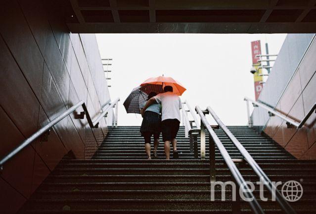 flickr.com.