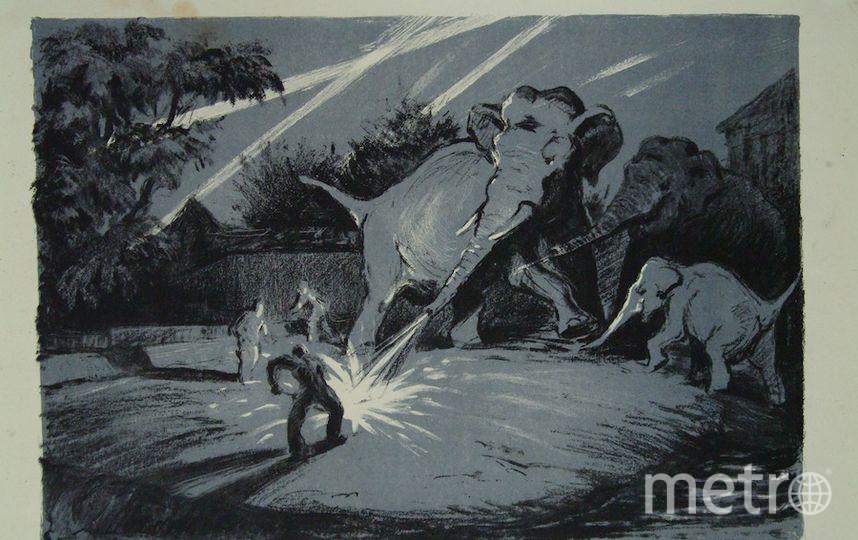 Московский зоопарк, Трофимов В.В.