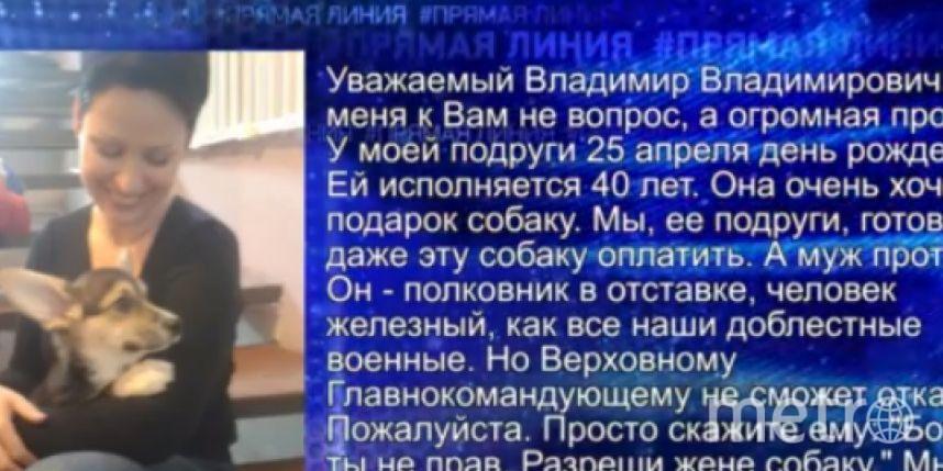скриншот RT.
