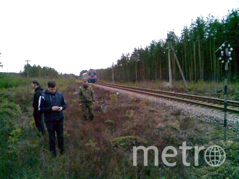 ГУ МЧС России по Ленинградской области.