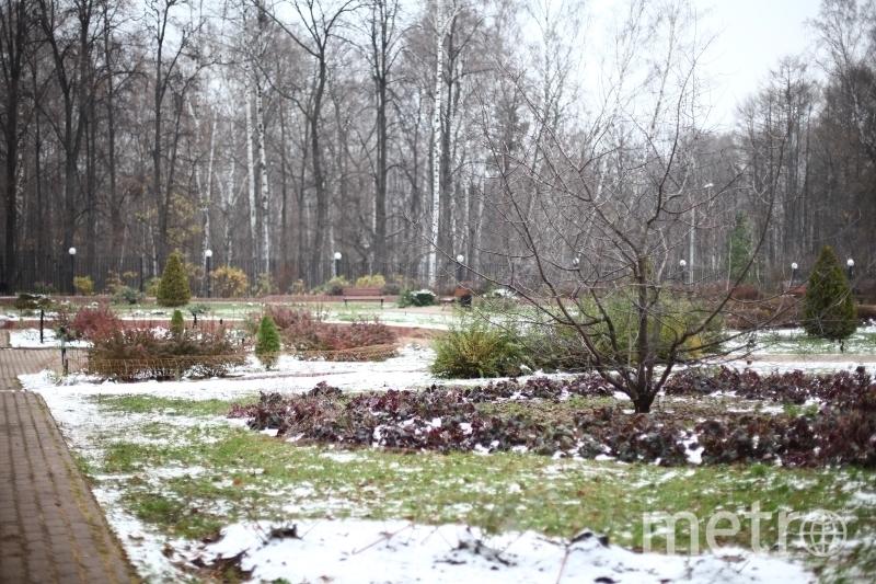 park.sokolniki.com.