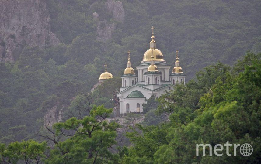Елена Щитова.