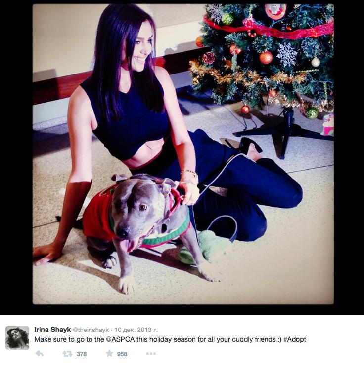 Скриншот из Twitter Ирины Шейк.
