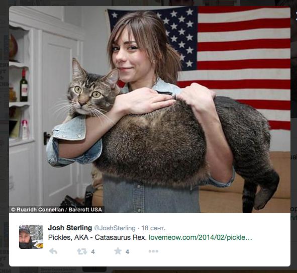 Скриншот записи в Twitter @JoshSterling.