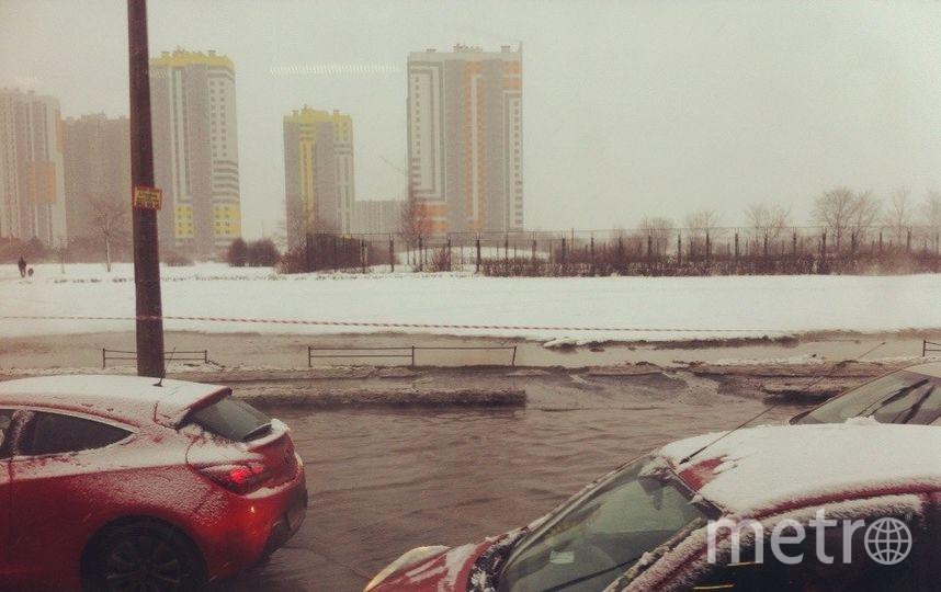 http://vk.com/kupchino_city.