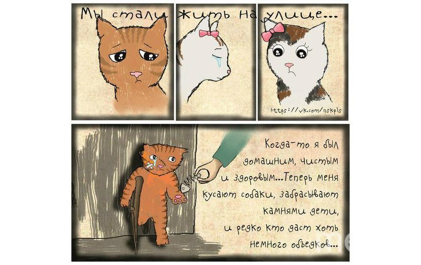 художники: Наталья Шульгина и Имран Тано.