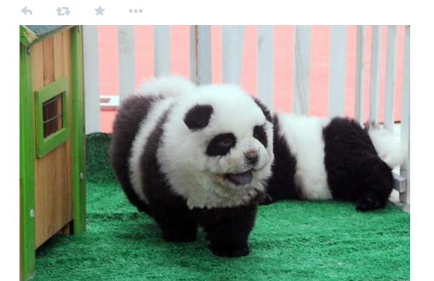 Скриншот страницы в Twitter ресурса Corrierra della Sera.